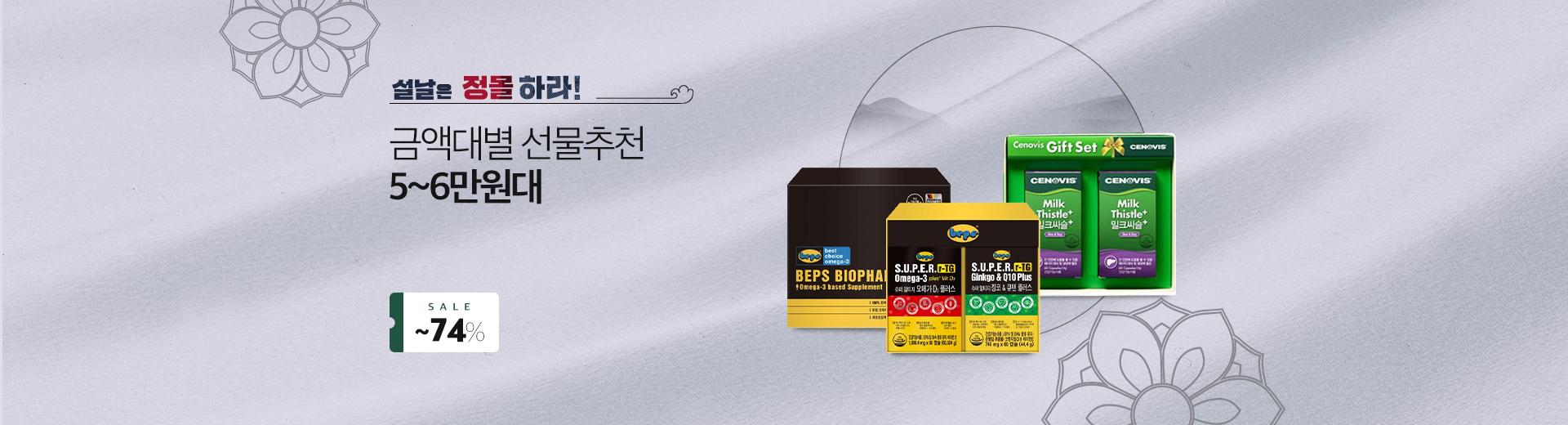 금액대별 추천 5~6만원